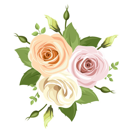 buds: Bouquet of pink and orange roses. Vector illustration.