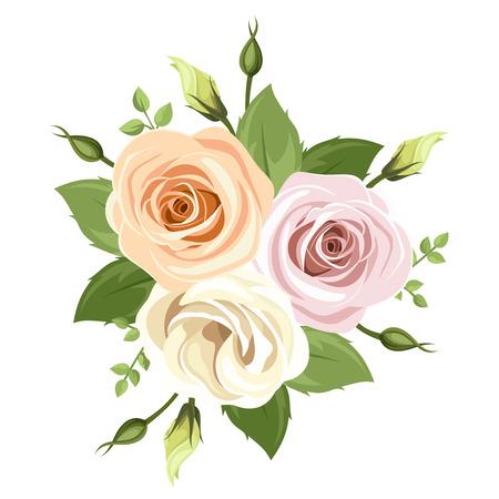 rosas naranjas: Ramo de rosas de color rosa y naranja. Ilustración del vector.