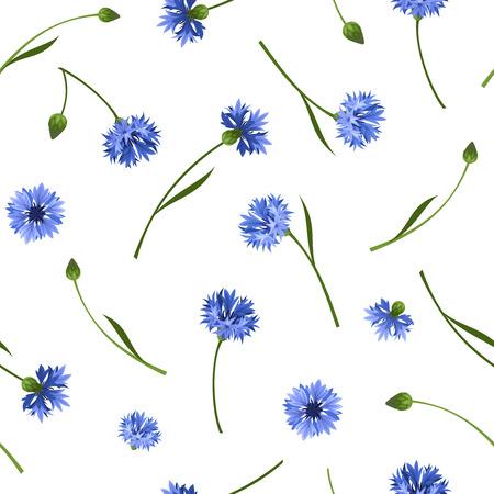 fiordaliso: Seamless pattern con fiordalisi blu. Illustrazione vettoriale.