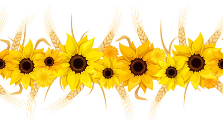 Horizontal seamless background with sunflowers and ears of wheat. Vector illustration.