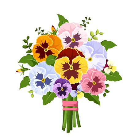 Bouquet of colorful pansy flowers. Vector illustration. Vectores