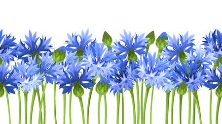 cornflowers: Horizontal seamless background with blue cornflowers. Vector illustration.