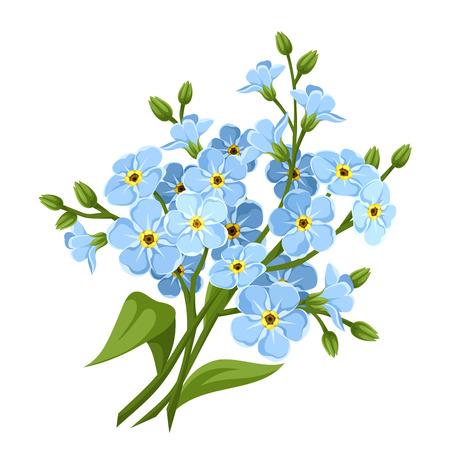 青いワスレナグサの花。ベクトルの図。  イラスト・ベクター素材