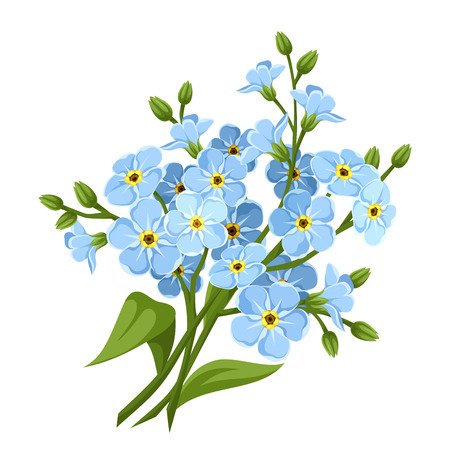 Blue forget-me-not flowers. Vector illustration.