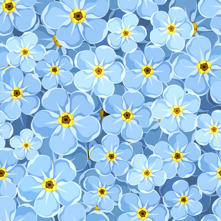 forget me not: Seamless background with blue forget-me-not flowers. Vector illustration. Illustration