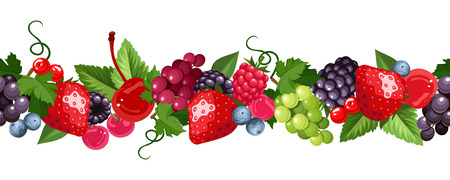 brambleberry: Horizontal seamless background with various berries. Vector illustration. Illustration