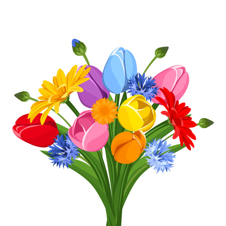 Bouquet of colorful tulips, gerbera flowers and cornflowers. Vector illustration.