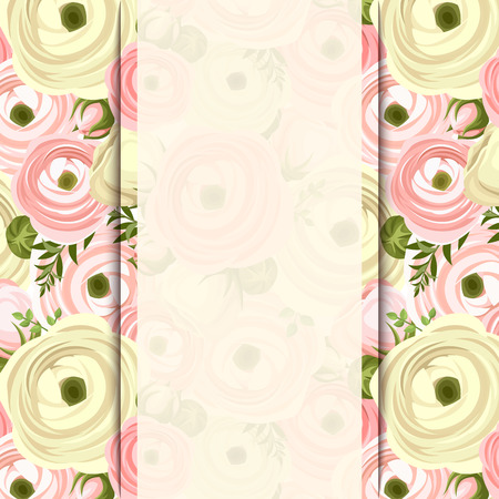 buttercup  decorative: Vector invitation card with pink and white ranunculus flowers. Illustration