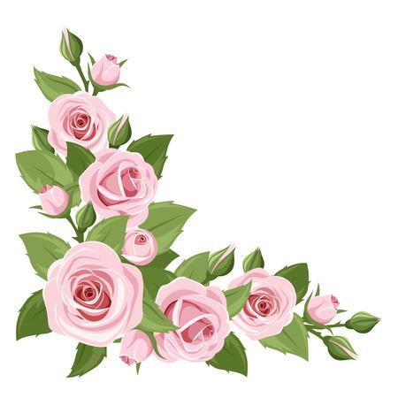 achtergrond met roze rozen en groene bladeren.