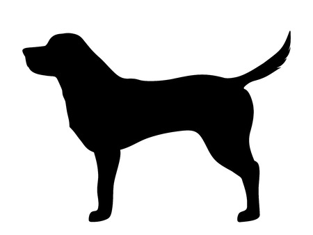 Vector black silhouette of a labrador retriever dog isolated on a white background.