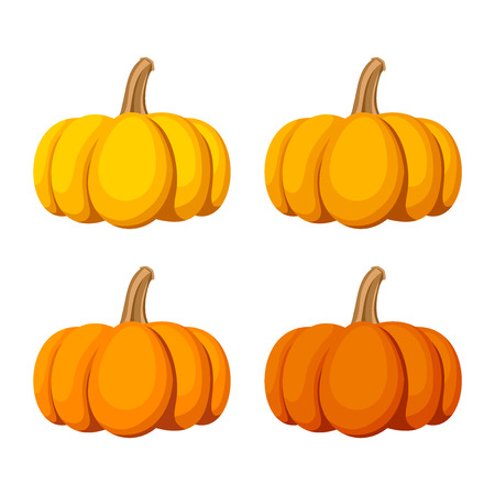 pumpkin: Set of four pumpkins isolated on a white background.  Illustration