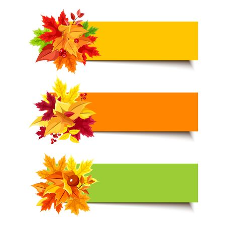 fallen: Set of three vector orange, yellow and green banners with colorful autumn leaves.