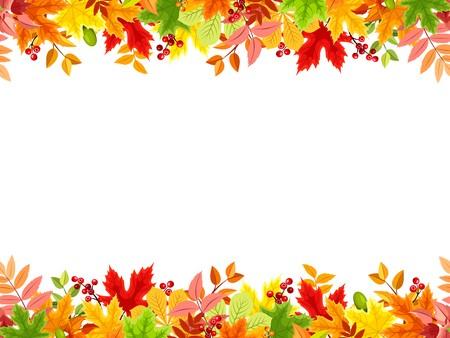 Autumn: Vector marco horizontal sin fisuras con coloridas hojas de otoño sobre un fondo blanco.