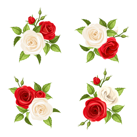 Set of four vector bouquets of red and white roses isolated on white.
