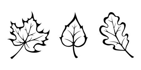 Vector zwarte contouren van de herfst esdoorn, eik en berk bladeren geïsoleerd op wit. Vector Illustratie