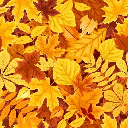 Vector seamless pattern with autumn colorful leaves.