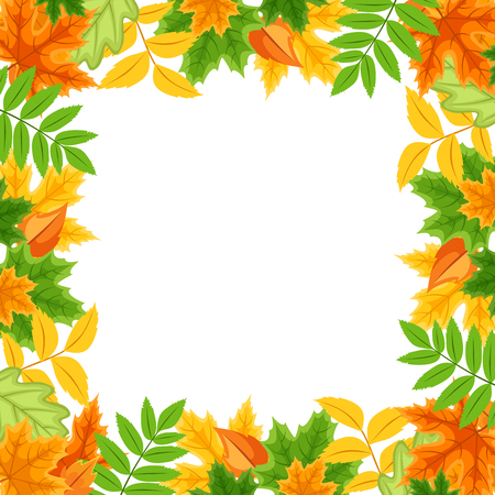 leafage: Vector frame with autumn various colorful leaves. Illustration