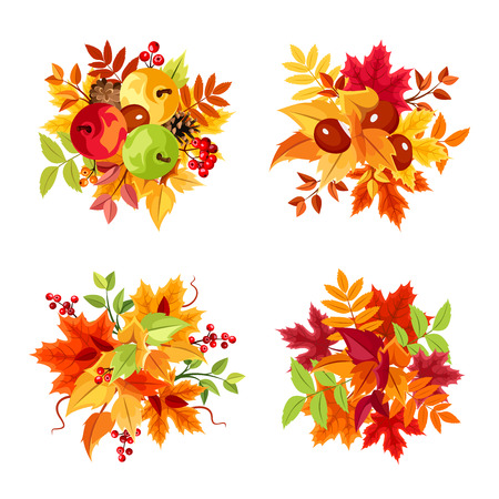 fallen fruit: Set of four vector colorful autumn leaves bouquets isolated on a white background. Illustration