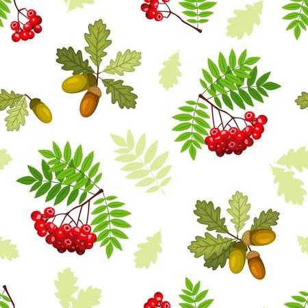 feuille arbre: Vector seamless pattern de chênes et Rowan branches, les feuilles et les baies sur un fond blanc.