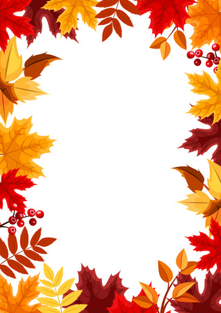 Vector background with colorful autumn leaves. Illustration