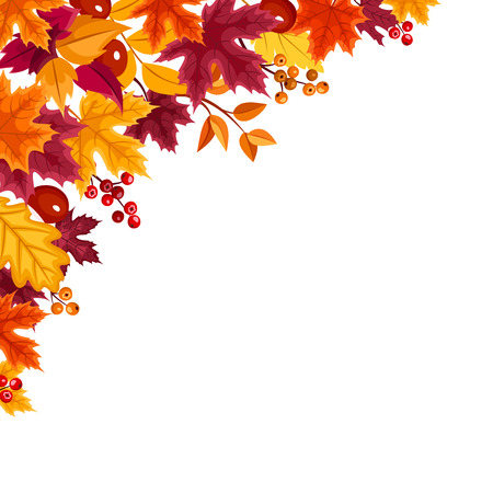 Vector background with red, orange, yellow and purple autumn leaves.