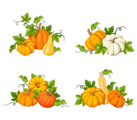 ベクトル オレンジ カボチャと白い背景で隔離の葉のセットです。  イラスト・ベクター素材