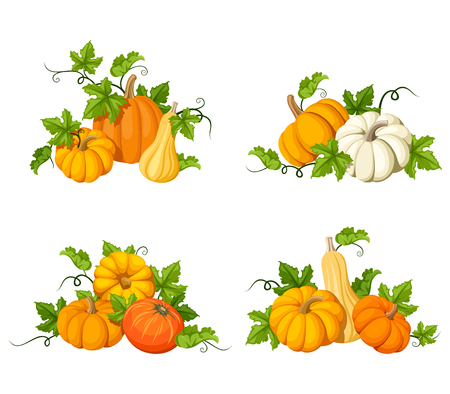 isolated: Set of vector orange pumpkins and leaves isolated on a white background.