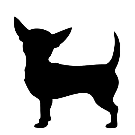 dog: Vector black silhouette of a Chihuahua dog isolated on a white background.