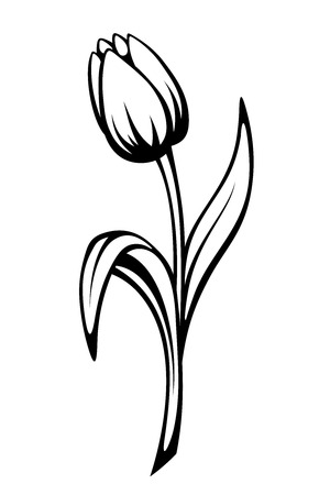 stylized: Vector black contour of a tulip flower isolated on a white background.