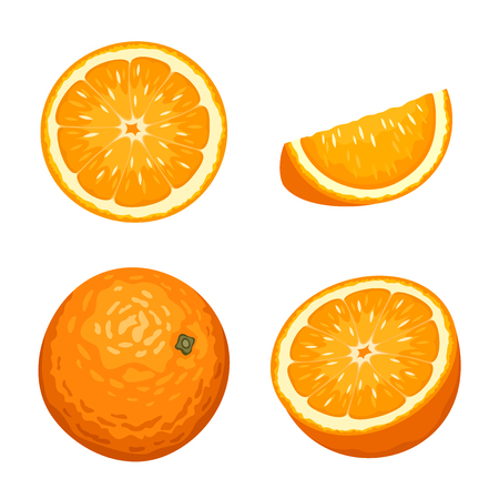 orange slice: Vector illustration of whole and sliced orange fruits isolated on a white background.