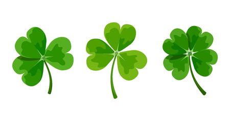 cloverleaf: Vector set of green clover leaves shamrock isolated on a white background. Illustration