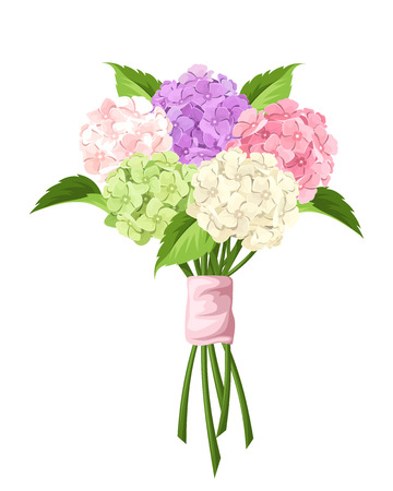 temperate: Vector bouquet of pink, purple, green and white hydrangea flowers isolated on a white background.