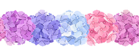 Vector horizontal seamless background with pink, blue and purple hydrangea flowers.