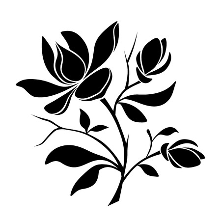 Vector black silhouette of magnolia flowers on a white background. Ilustração