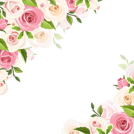 white roses: Vector white background with pink and white roses and green leaves.