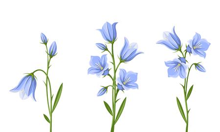 zestaw niebieskie kwiaty bluebell samodzielnie na białym tle. Ilustracje wektorowe