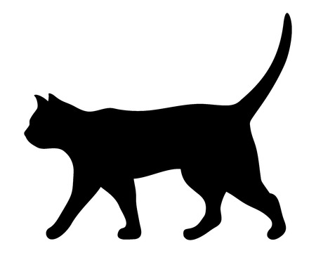 silhouette: Vector black silhouette of a walking cat.