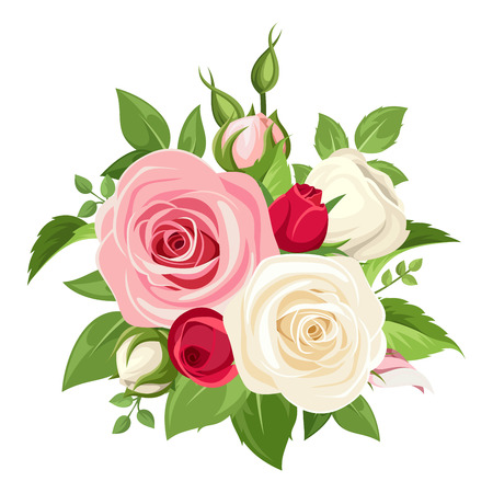 red rose bouquet: Vector bouquet of red, pink and white roses and buds isolated on a white background.