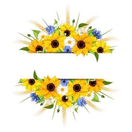 Vector achtergrond van zonnebloemen, madeliefjes, korenbloemen, oren van tarwe en bladeren geïsoleerd op een witte achtergrond.