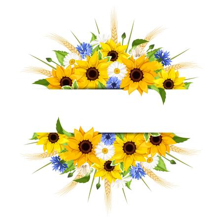 ear bud: Vector background of sunflowers, daisies, cornflowers, ears of wheat and leaves isolated on a white background.