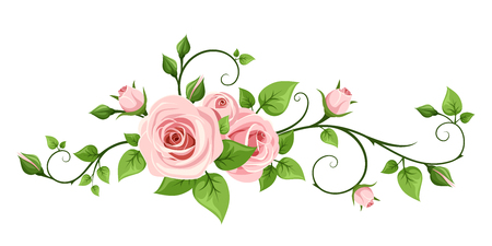 bouquet: pink rose isolated on a white background.