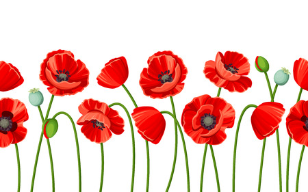 horizontal seamless background with red poppies on a white background.