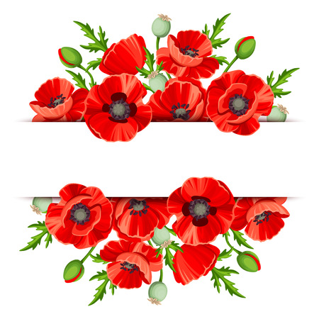 flowers bouquet: background banner with red poppies.