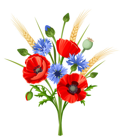 poppies: bouquet of red poppy flowers, blue cornflowers and ears of wheat isolated on a white background. Illustration