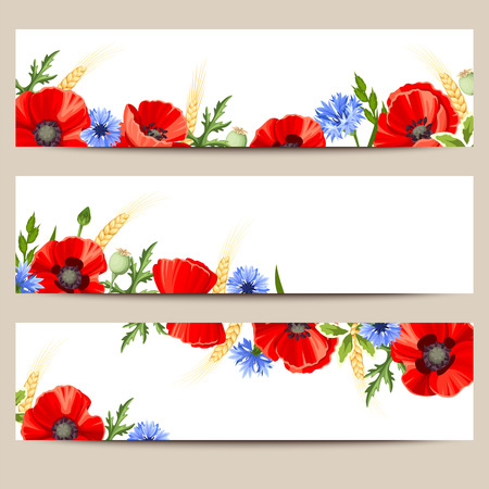 red and white: Set of three vector web banners with red poppies and blue cornflowers. Illustration
