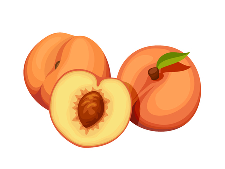 peach: Vector three peaches isolated on a white background.