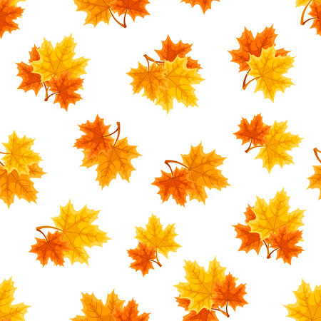 red leaves: Vector seamless pattern with red, orange and yellow autumn maple leaves on a white background. Illustration