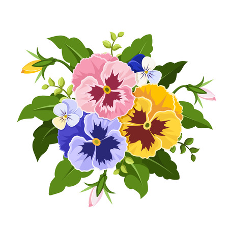 Vector pink, yellow and purple pansy flowers isolated on a white background. Иллюстрация