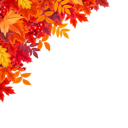 Vector corner background with red and orange autumn leaves. Illustration
