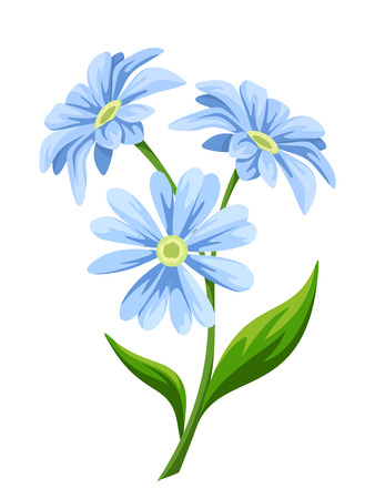 Three blue flowers isolated on a white background. Vector illustration.
